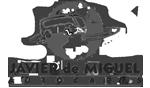 logo de Autocares Javier de Miguel Moreno